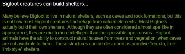 Bigfoot-shelters-lean-to.jpg