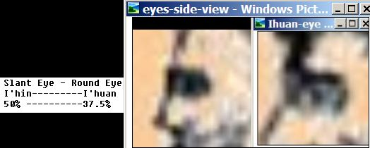 Eyes-side-view-races.jpg