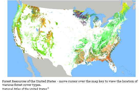 Forests-resources-of-the-united-states.jpg